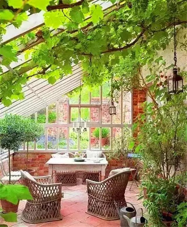 一个院子,一壶茶,一把摇椅,一本书
