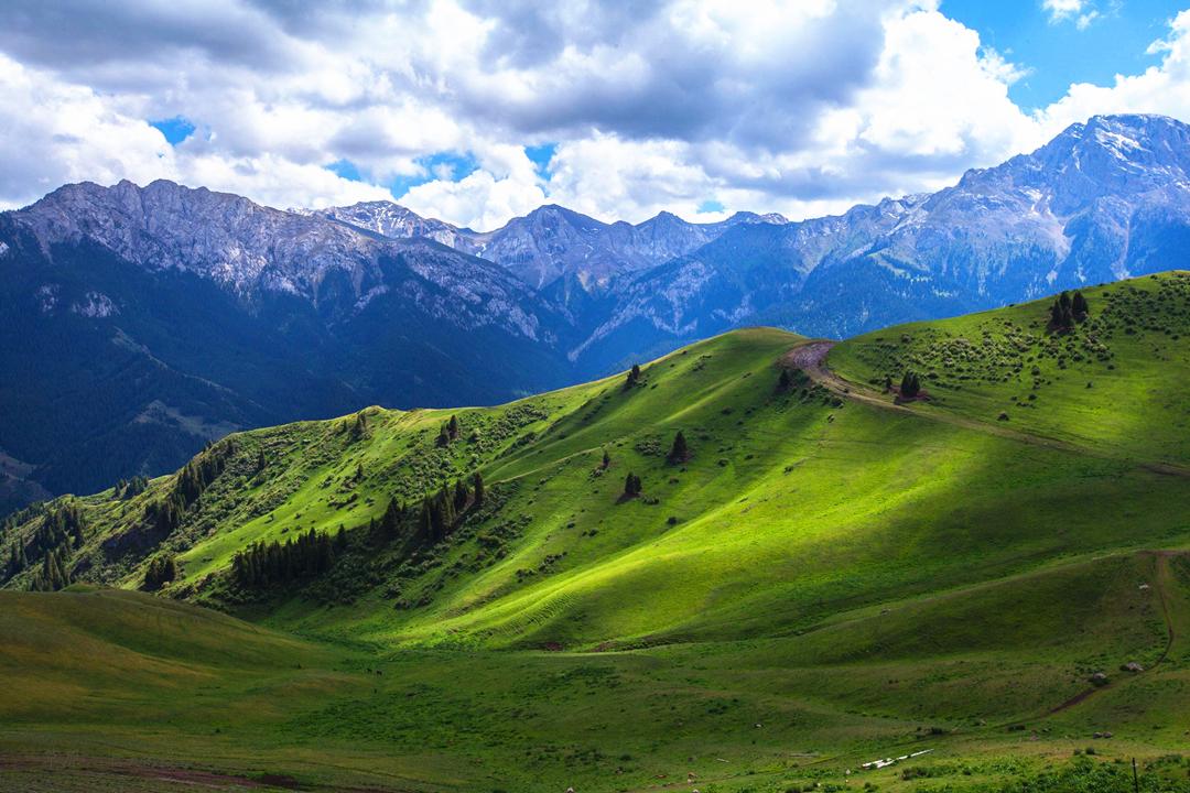 中国最美的六大草原:去过两个算及格,全去过的太幸福了!