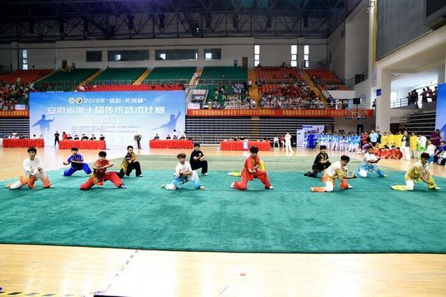 阜阳师范大学武术队参加安徽省第十届传统武术比赛再创佳绩