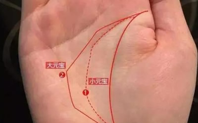 手掌中的元宝纹代表着有财运吗?