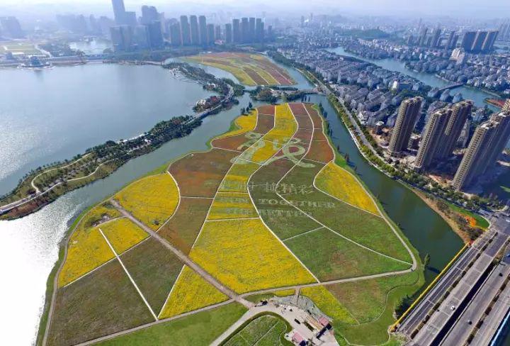2019绍兴国际马拉松赛沿线花海选址基本确定,在这三个地块!