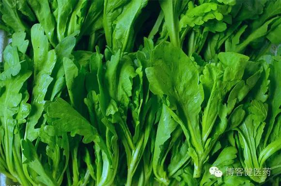 鱼菜高:健康养生是一种生活态度,食物中的营养素——蔬菜类