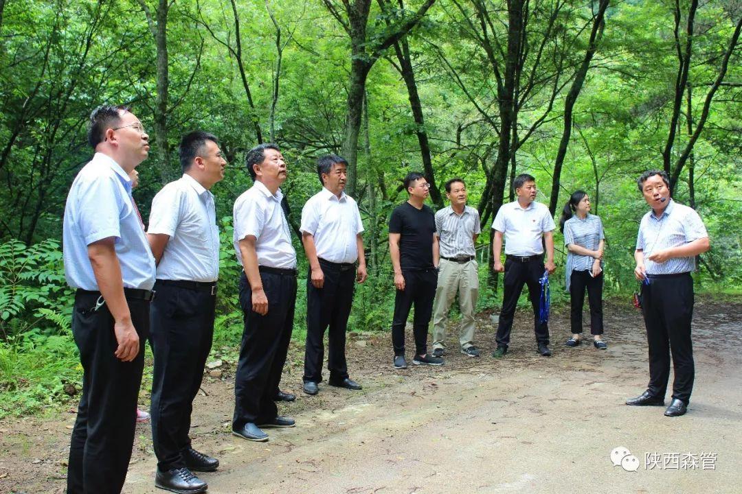 【森管简讯】国家发改委、国家林业和草原局到省宁西林业局调研国有林场改革工作