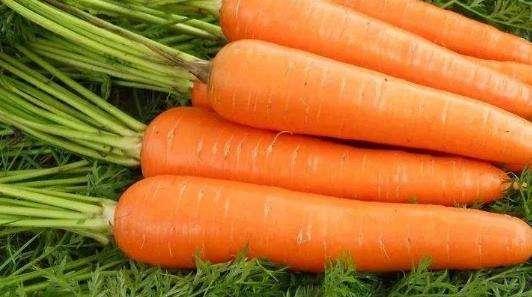 鱼菜高:这8种增强免疫力的蔬菜,平时要多吃。