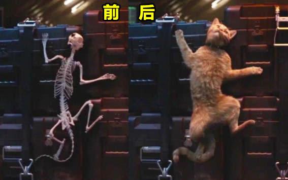 动漫-漫威去掉特效,惊队的猫超级搞笑,钢铁侠飞起时原来是踩在椅子上(3)