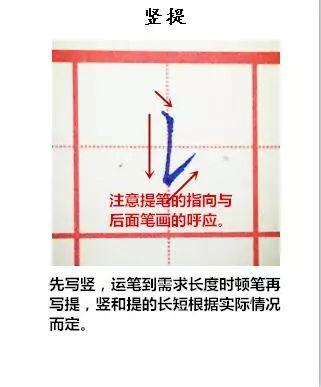 纯手写示范硬笔楷书28种基本笔画 附带文字注释书写重点