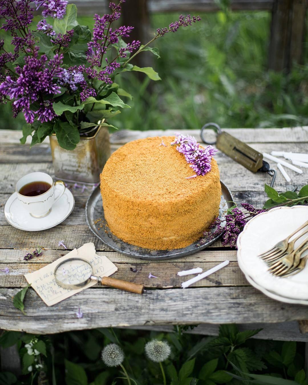 宠物-这位漂亮的美女蛋糕师,让猫咪来为蛋糕代言,将平淡无奇的蛋糕化腐朽为神奇(32)