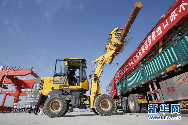 <b>中欧班列推动甘肃成为中俄木材贸易投资的新热土</b>