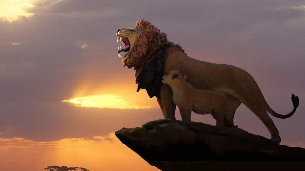 文学-《狮子王》刷屏!辛巴归来,经典自有姿态(6)