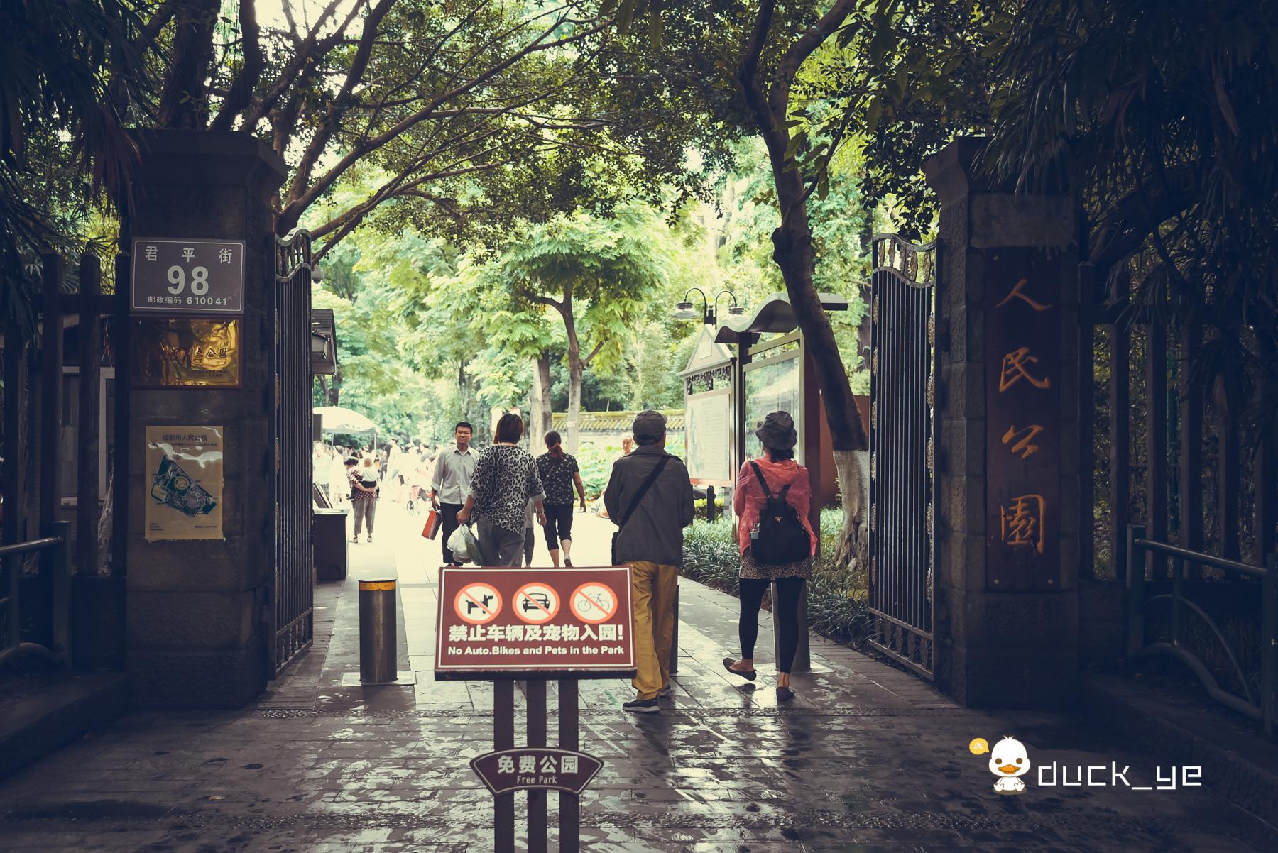 成都旅行花100元来公园体验这一绝技,游客感叹很舒服但短暂又贵