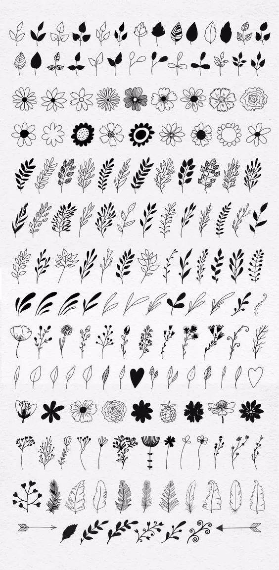 各种植物简笔画,素描画大全
