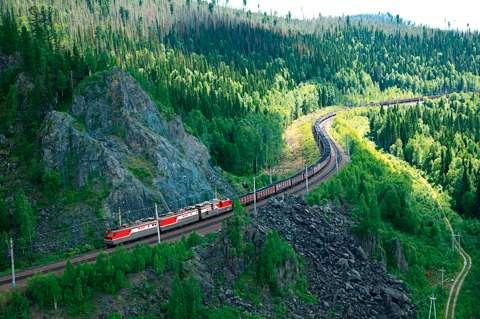 宠物-免费yoqq俄罗斯一只宠物犬沿铁路穿越125英里荒原 跑回原主人家附近yoqq资源(3)