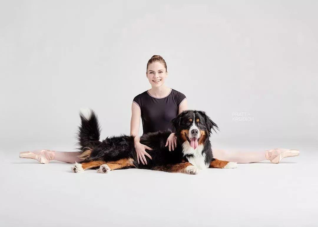 宠物-与狗狗共舞的芭蕾舞者(11)