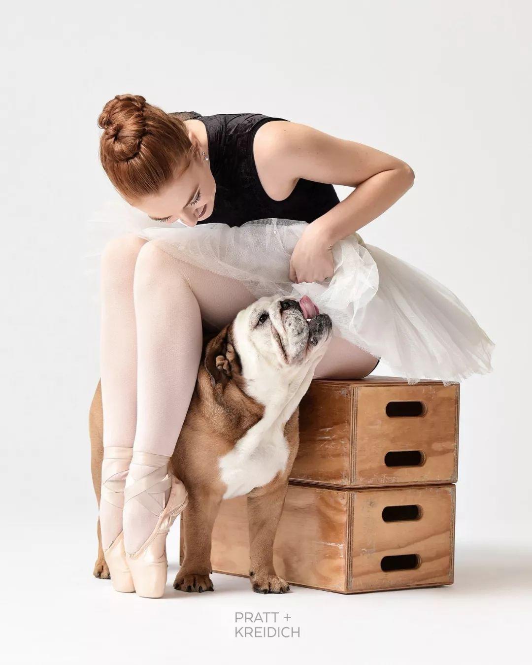 宠物-与狗狗共舞的芭蕾舞者(4)