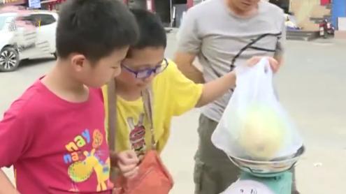 不上补习班!硬核爸爸暑假购万斤西瓜让孩子卖:讲道理不如体验生活