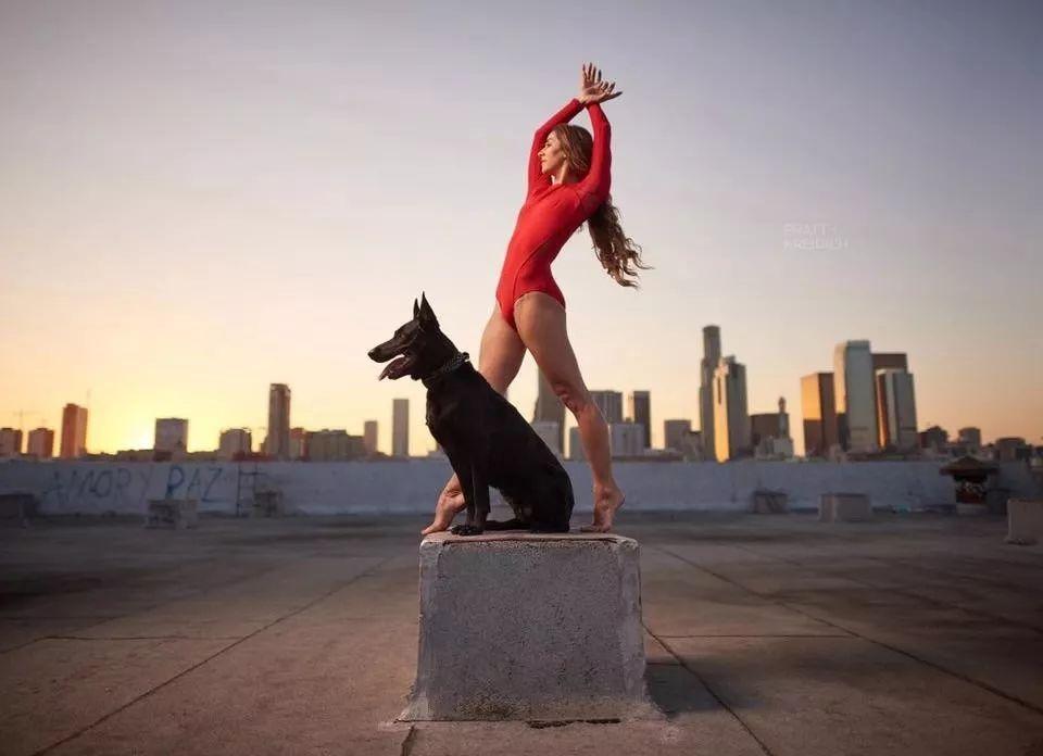 宠物-与狗狗共舞的芭蕾舞者(28)