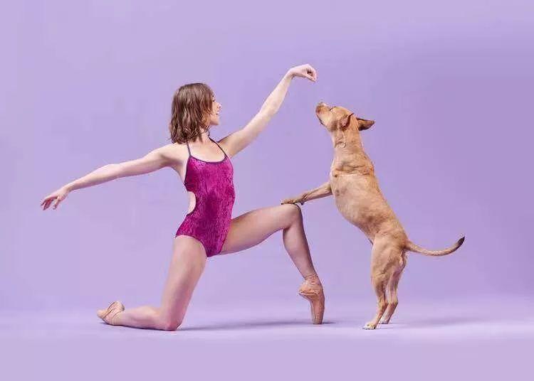 宠物-与狗狗共舞的芭蕾舞者(21)