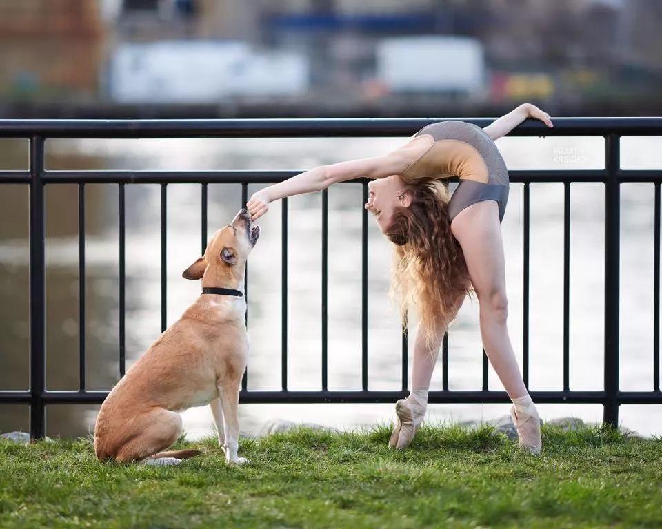 宠物-与狗狗共舞的芭蕾舞者(27)