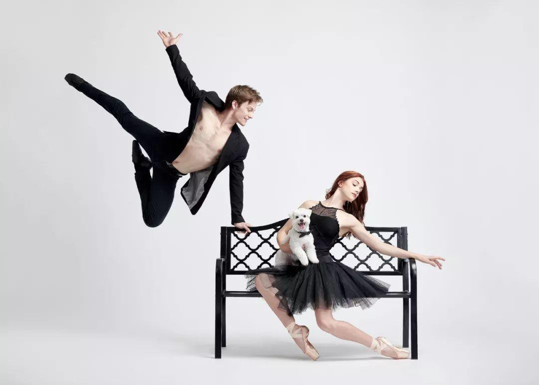 宠物-与狗狗共舞的芭蕾舞者(17)