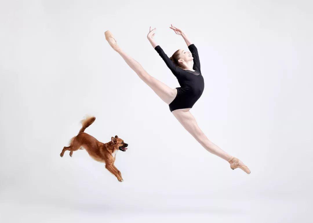 宠物-与狗狗共舞的芭蕾舞者(14)