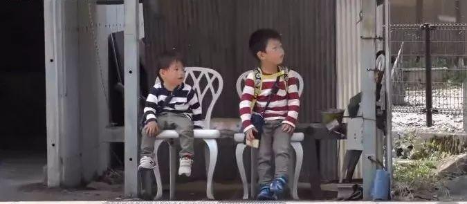 泪目!日本4岁哥哥带着2岁弟弟, 为去世父亲买花: 路很长, 谢谢有你陪我