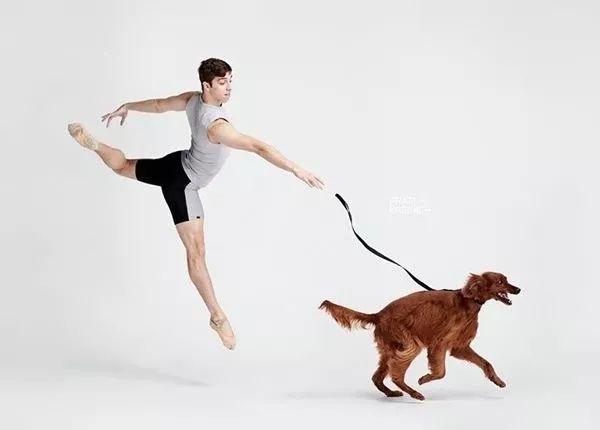 宠物-与狗狗共舞的芭蕾舞者(6)