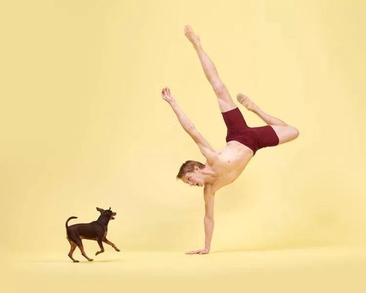 宠物-与狗狗共舞的芭蕾舞者(20)