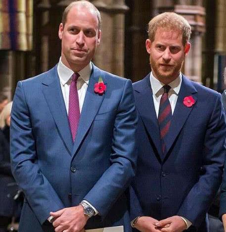 凯特帮助威廉哈里两兄弟解决矛盾?和好的真正原因竟是彻底分家?