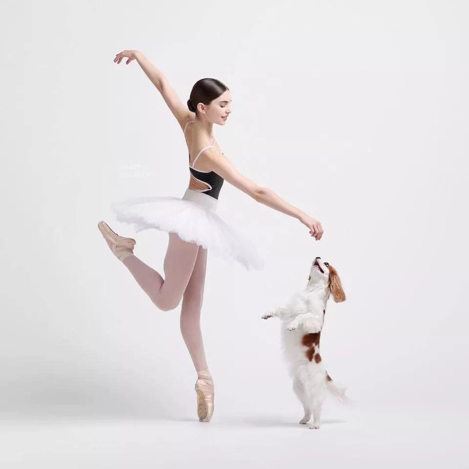 宠物-与狗狗共舞的芭蕾舞者(2)