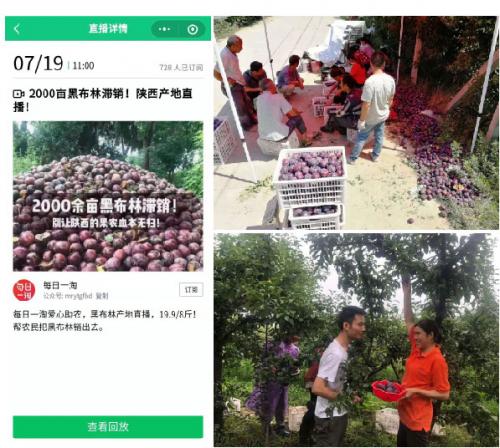 腾讯直播助力精准扶贫工作,为陕西果农带货25万斤