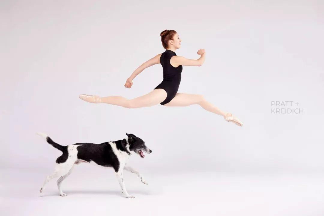 宠物-与狗狗共舞的芭蕾舞者(8)