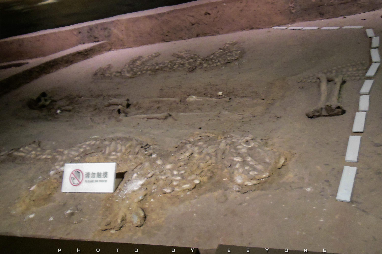 考古学通论讲义