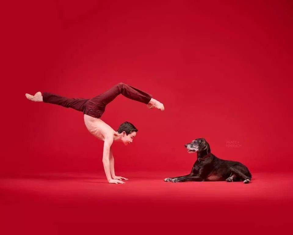 宠物-与狗狗共舞的芭蕾舞者(25)