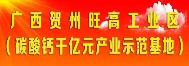 贺州旺高工业区管委会主任邹雪群带队深入企业调研各项目现场!