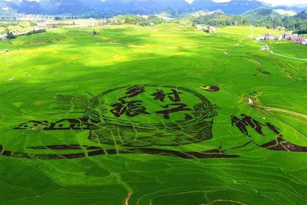 湖北村级集体经济百强村公布,丹江口2村上榜!有你们村吗?