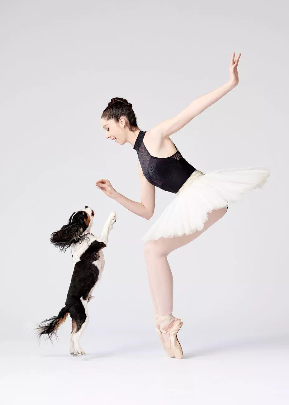 宠物-与狗狗共舞的芭蕾舞者(7)