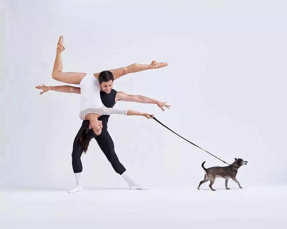 宠物-与狗狗共舞的芭蕾舞者(18)