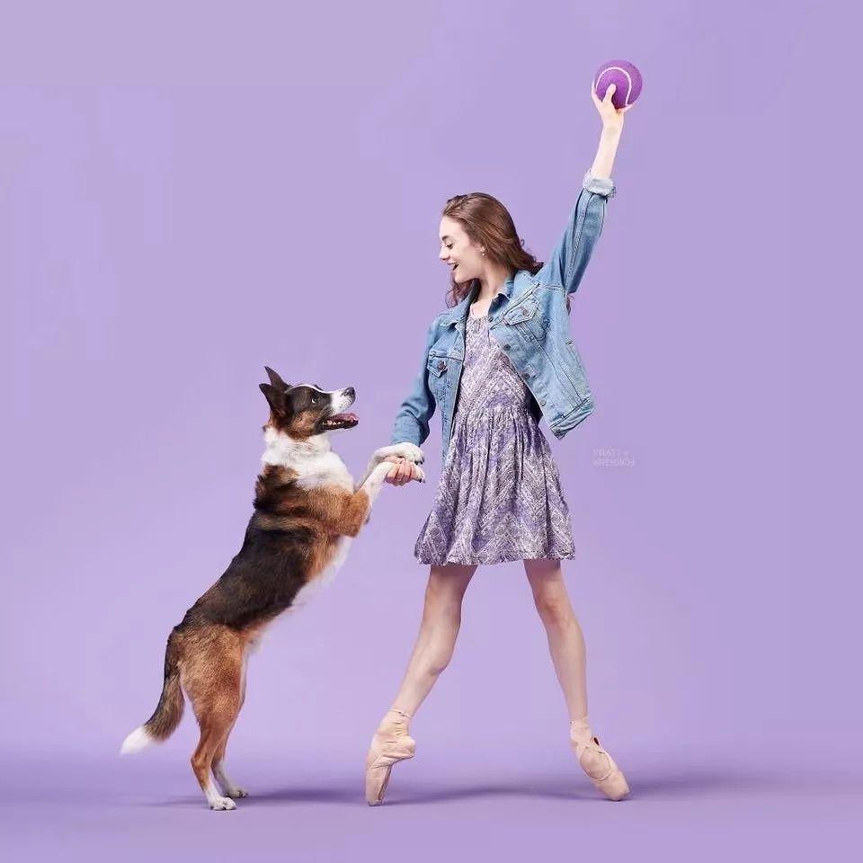 宠物-与狗狗共舞的芭蕾舞者(22)