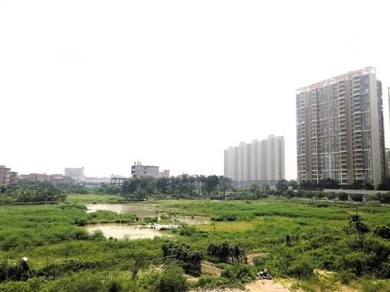 东莞商住用地供需上涨,房企重点布局临深片区