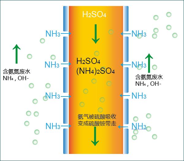 RANS系统解决染料、医药、农药类高氨氮废水处理问题 width=