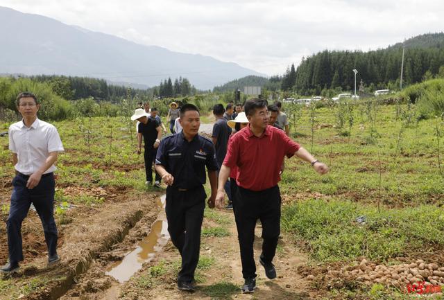 四川航空与西昌市政府签署战略合作框架协议