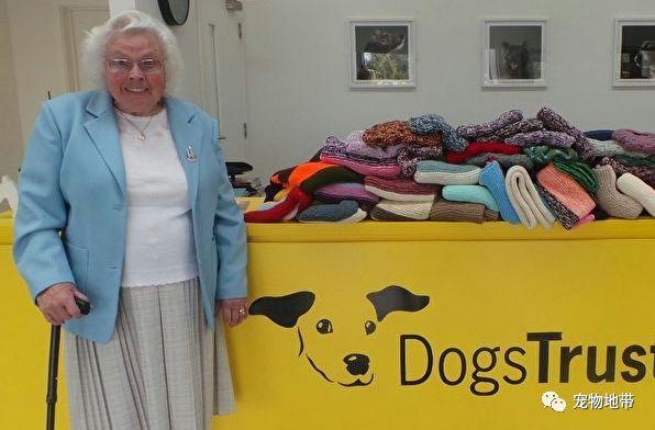 九旬奶奶编织450条毯子 为流浪狗保暖护航