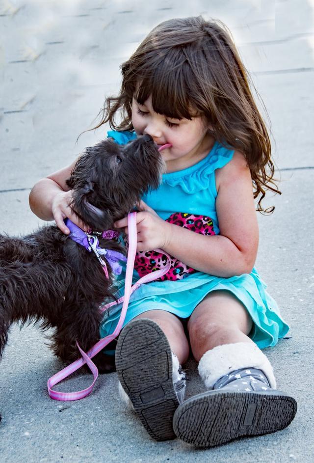 养宠物的坏处英语_家里有小孩到底能不能养狗,需要注意什么?_狗狗