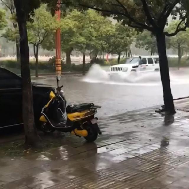 最美不是下雨天,而是这些雨中坚守的身影