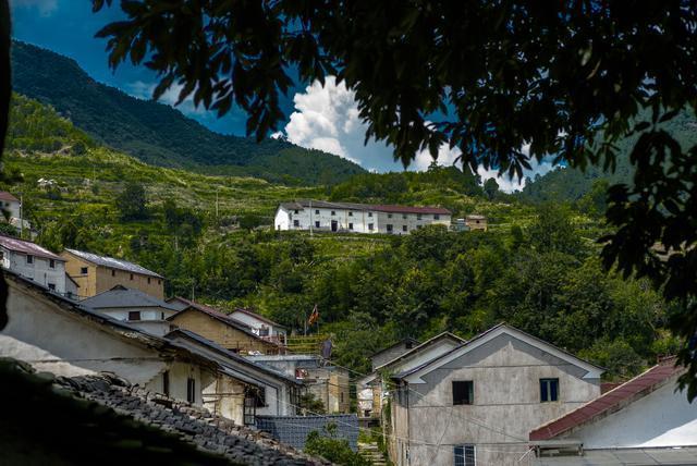 杭州|拔草可以看见银河、萤火虫的民宿
