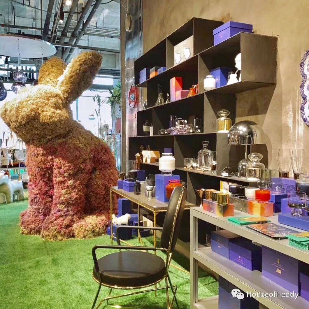 hoh爱趣家的网红大美兔也移步到室内陪大家一起玩乐啦,在室内入门处
