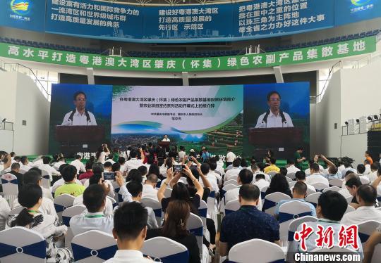 <b>大湾区南药产业园等超380亿农业项目落户肇庆</b>
