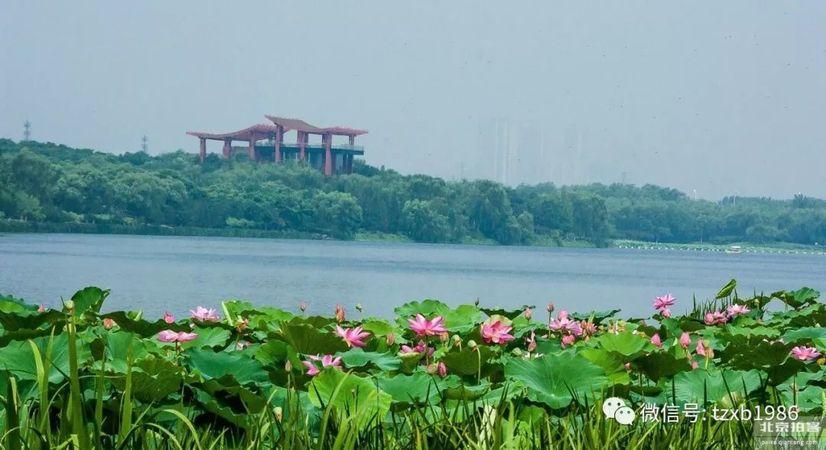 大运河国家文化公园建设方案敲定了!