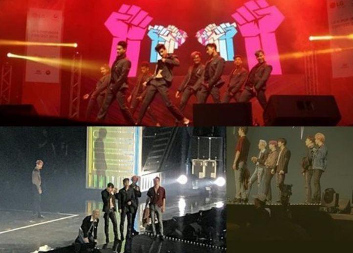 EXO演唱會魅力大,現場混入一只老鼠,粉絲:老鼠都去看演唱會了