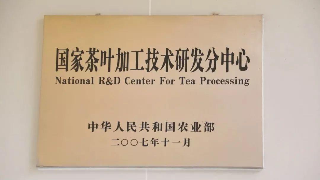 下关沱茶:传承百年技艺 打造长青基业